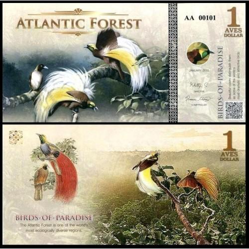 ATLANTIC FOREST 1 Aves...