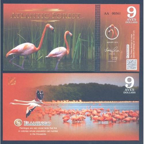 ATLANTIC FOREST 9 Aves...