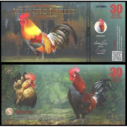ATLANTIC FOREST 30 Aves...