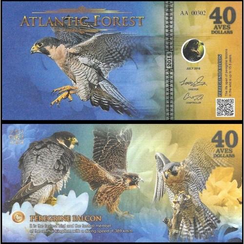 ATLANTIC FOREST 40 Aves...