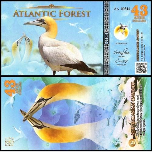 ATLANTIC FOREST 43 Aves...