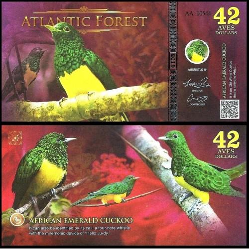 ATLANTIC FOREST 42 Aves...
